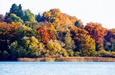 Fotograf Mainau, Herbstimpression